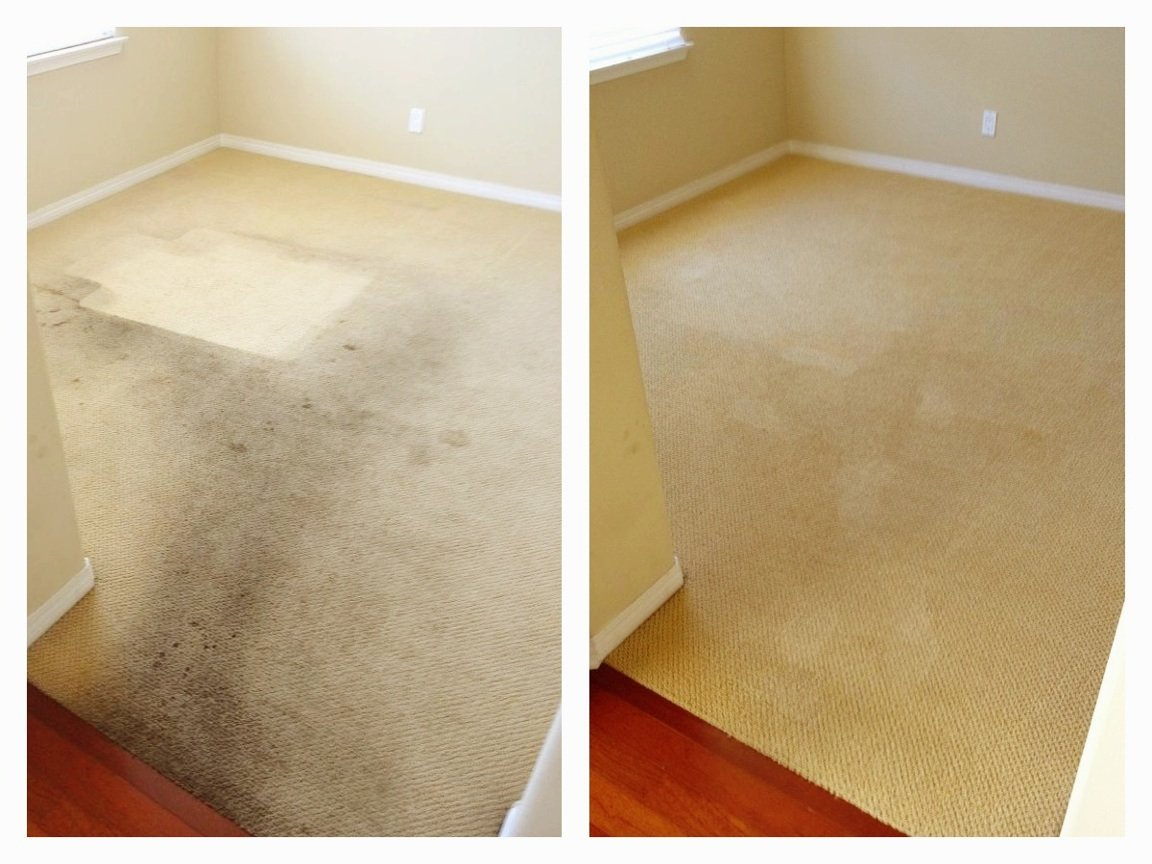 carpet cleaning Solihull