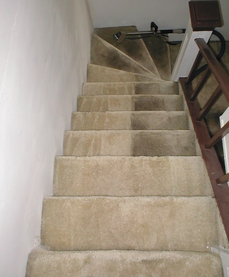 Professional carpet cleaning Wolverhapton