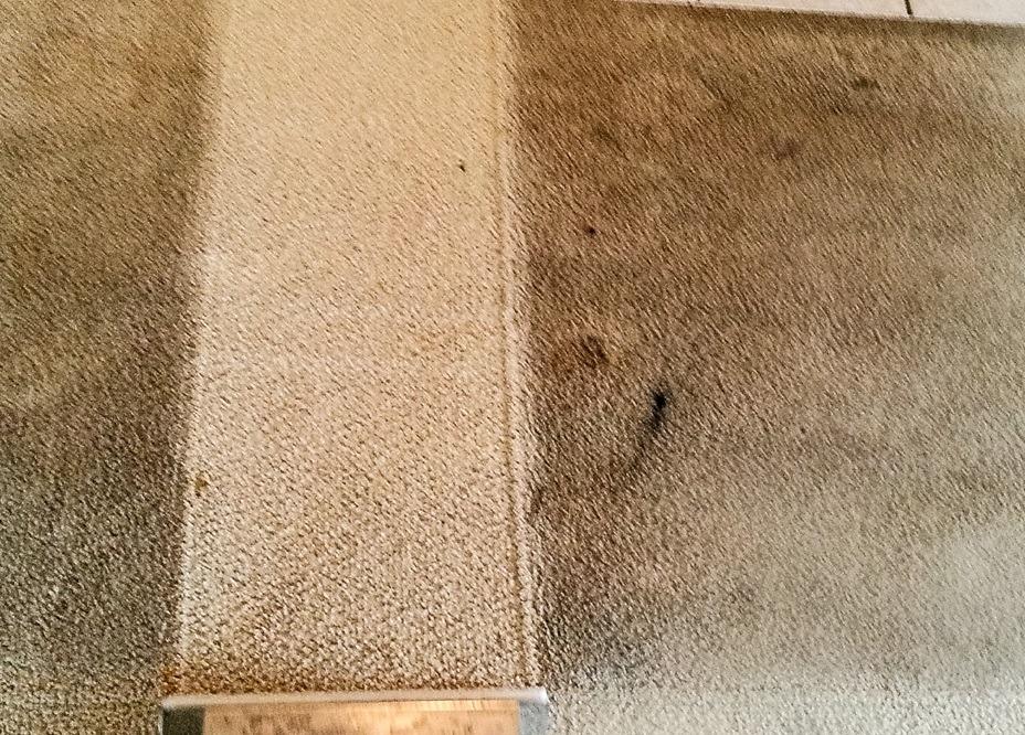 carpet cleaner Wolverhampton near me