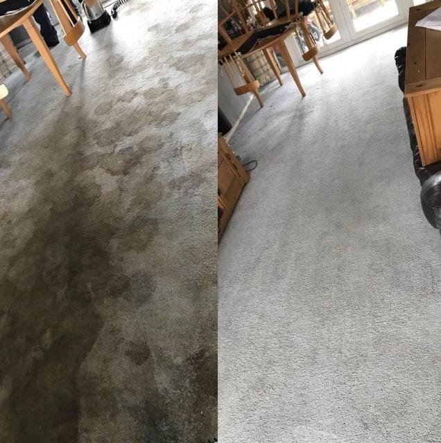 carpet cleaner tipton