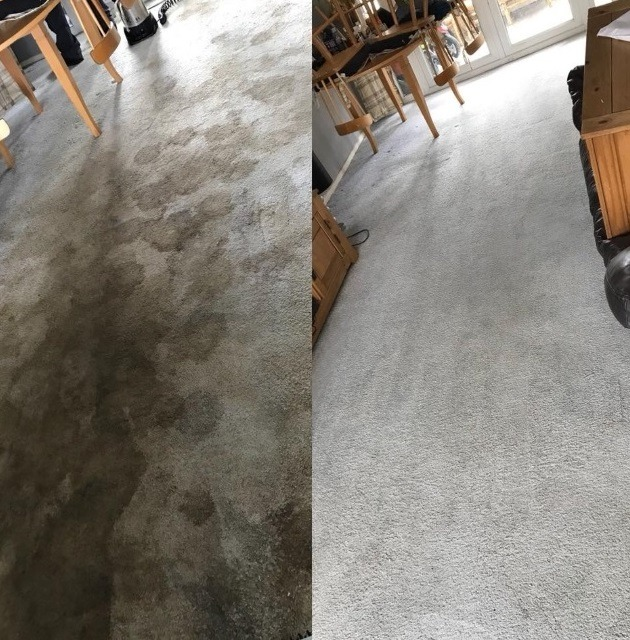 carpet cleaning service Tividale