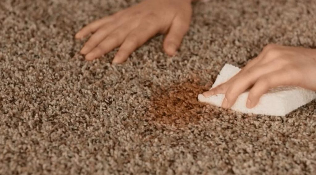 Getting rid of the deep odor of the carpet