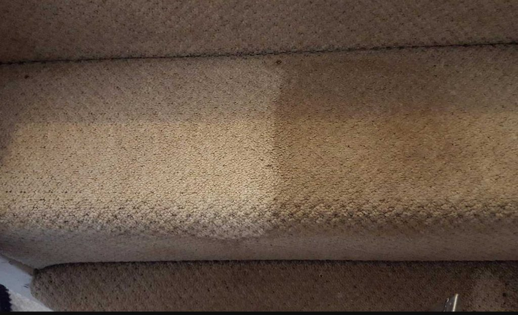 Professional carpet cleaning Hagley