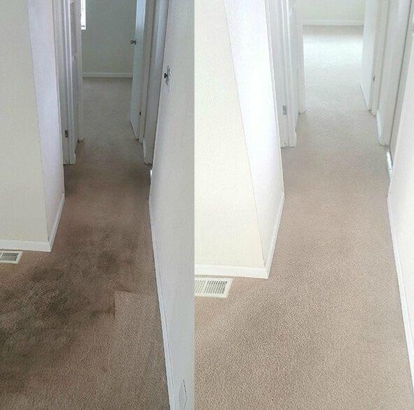 carpet cleaning Wednesbury