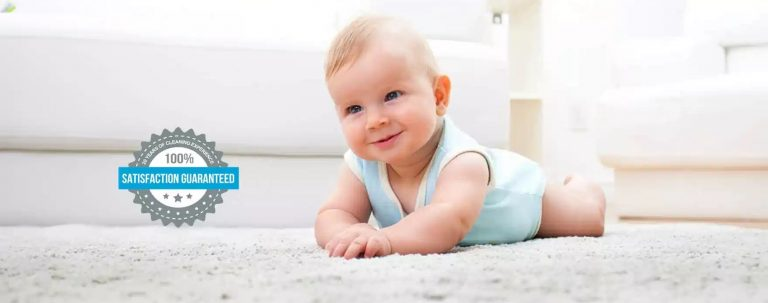 The Best Carpet Steam Clean Services InTown