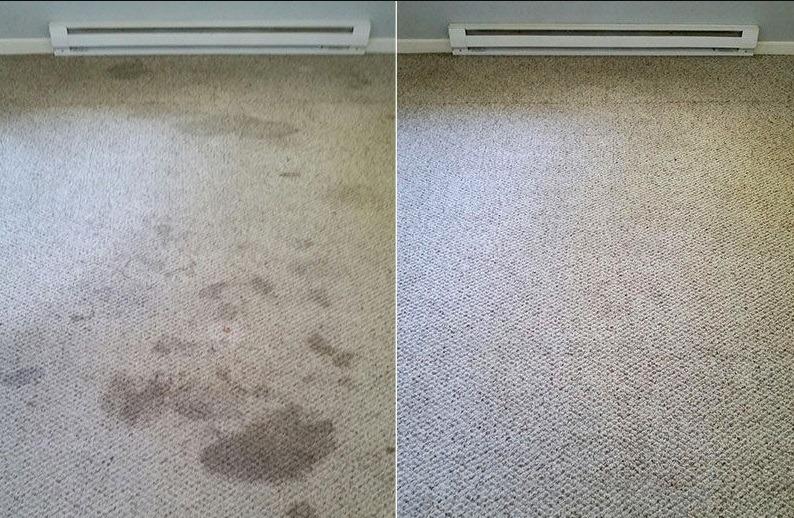 cheap carpet cleaner selly oak