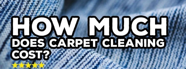 how much does steam carpet cleaning cost