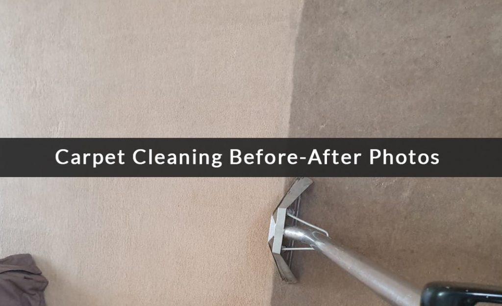 local carpet cleaner selly oak
