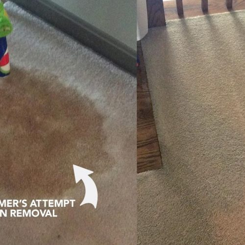 carpet cleaning company Kidderminster