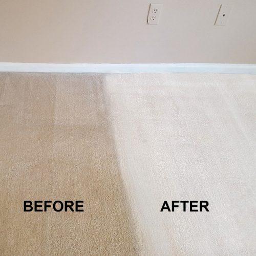 local carpet cleaner Kidderminster
